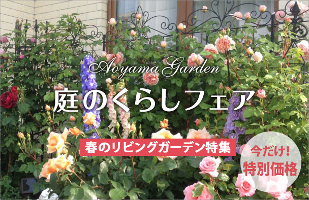 aoyama_fair_01
