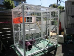 猫の遊び場の移動できる展示品(キャットハウス)