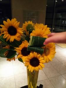 17-08-15-21-04-51-598_photo