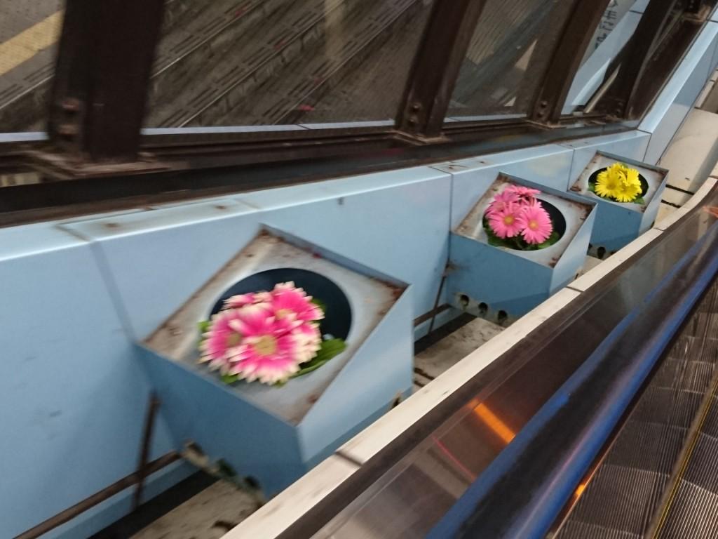 エスカレーター横にお花