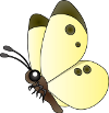 butterfly_a03 (1)