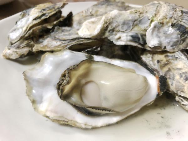 大きくてジューシーな広島の牡蠣