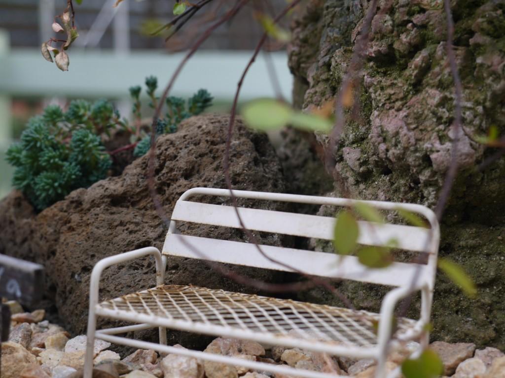 木株のお庭3