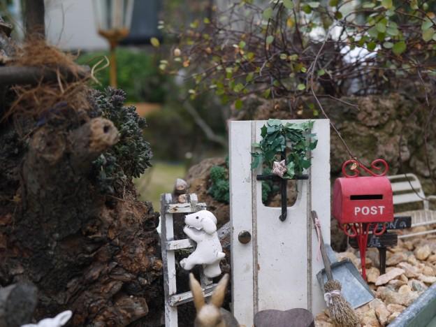 木株のお庭6