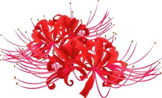 higanbana_red