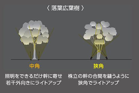 樹種別-1
