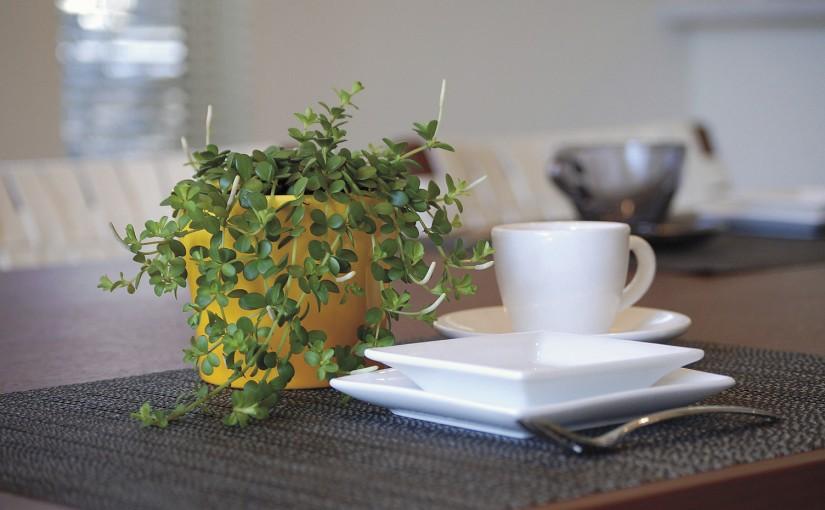観葉植物で始めるインドアガーデン
