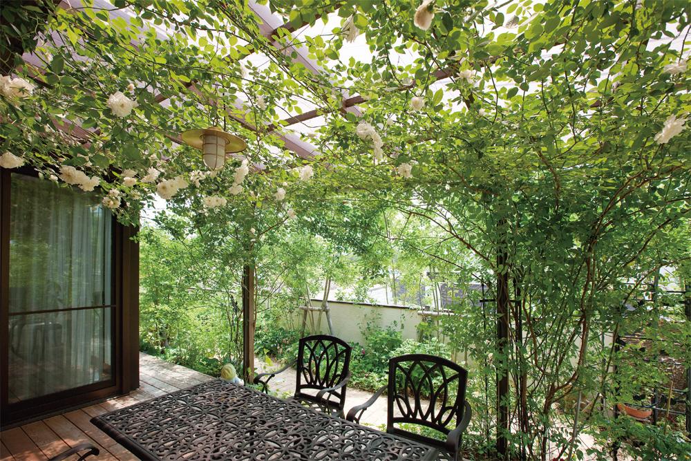 ガーデンリフォーム つるバラの提案2 After