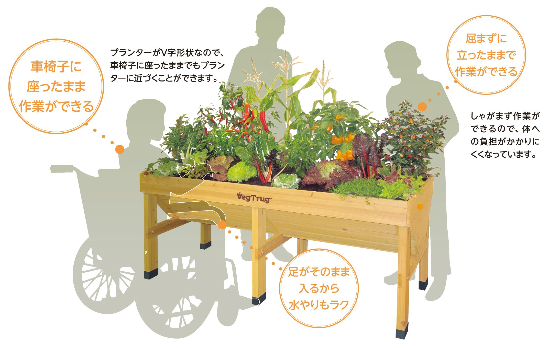 人にやさしい家庭菜園 ベジトラグ