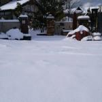 雪29115