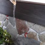 29115氷水鉢