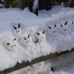 雪兎29115
