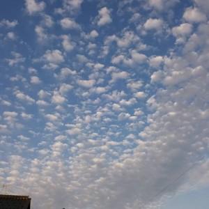 29112雲粒