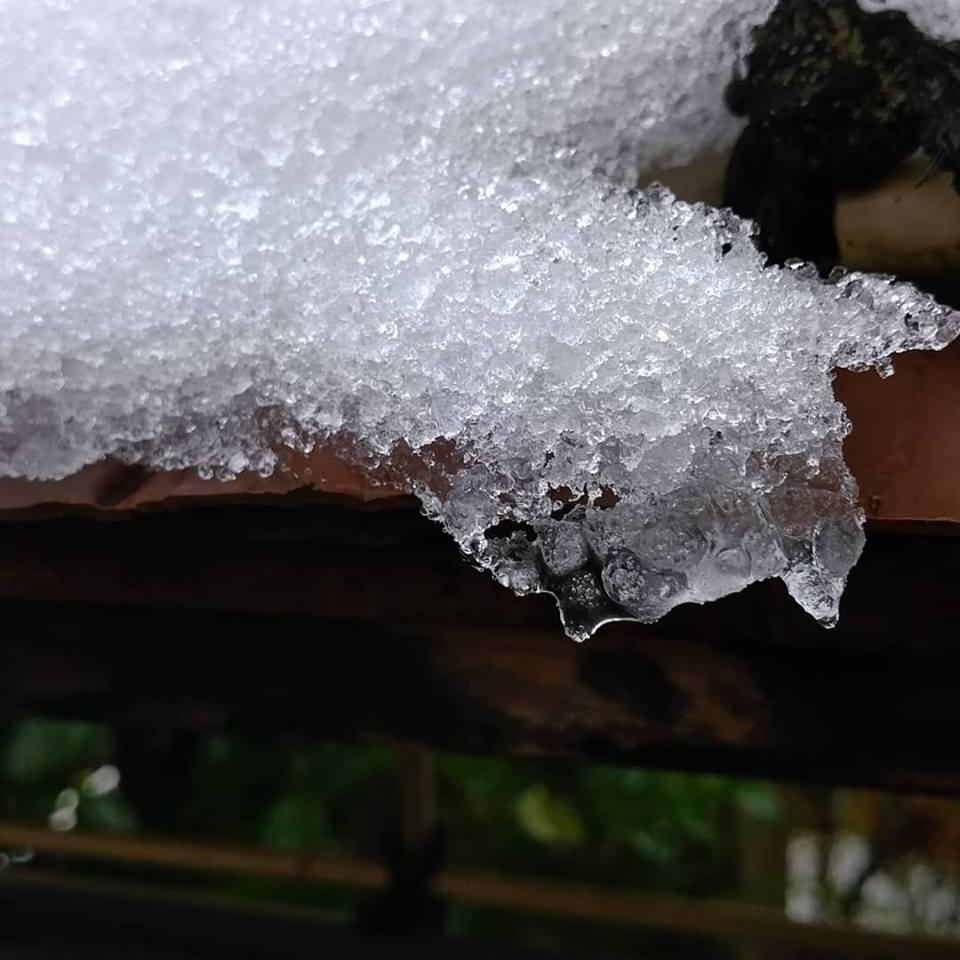 291215板塀屋根雪