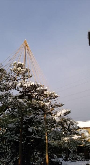 31121雪吊