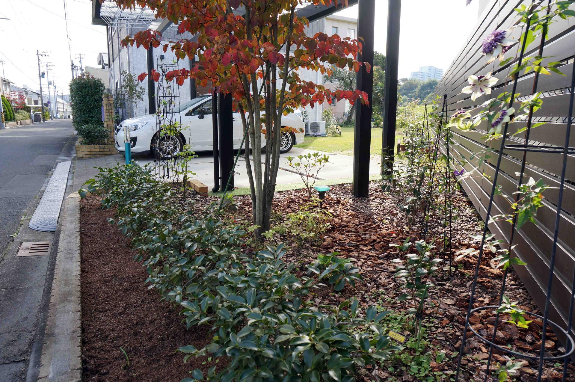 北側道路沿いの花壇
