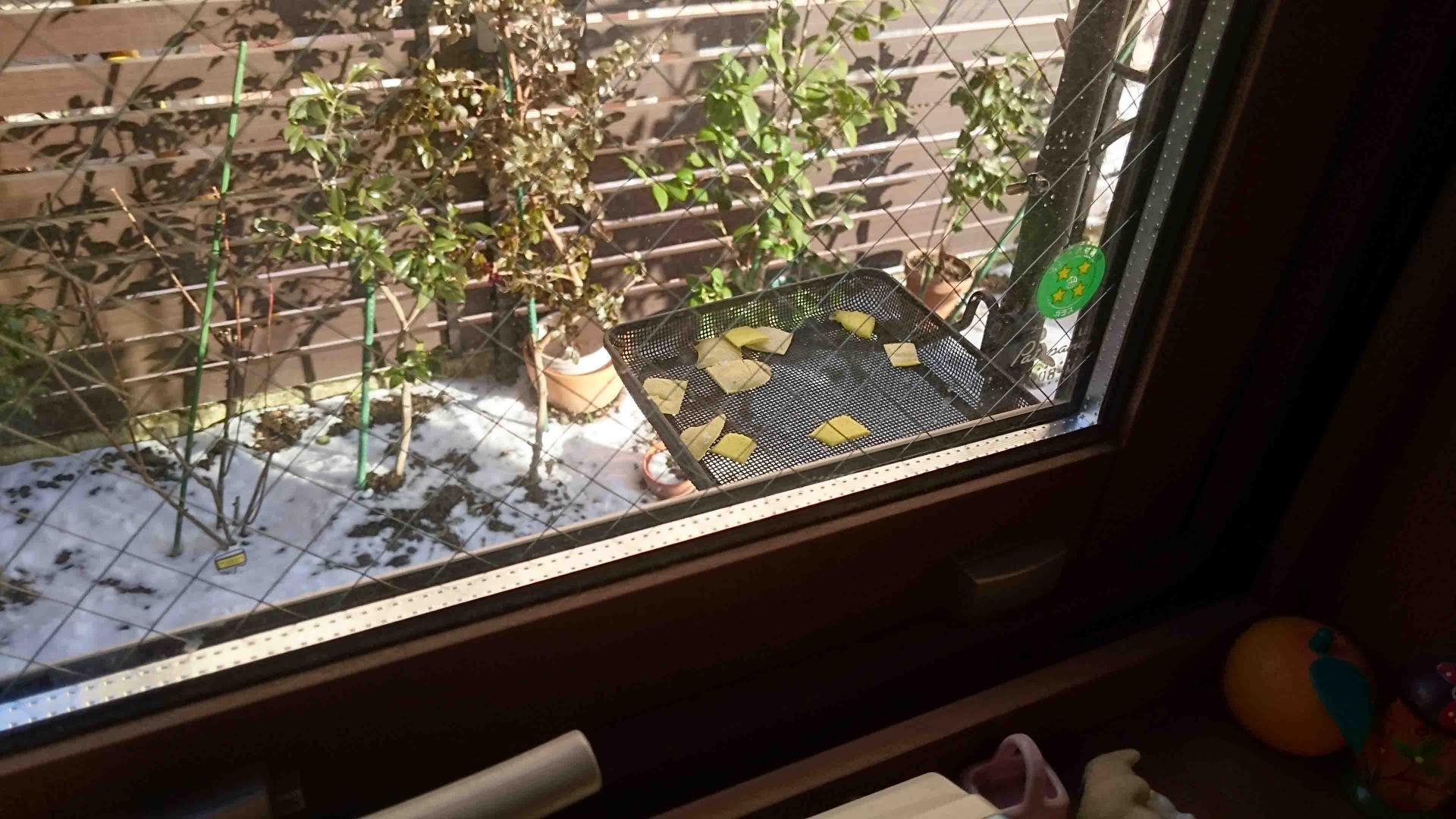 キッチン窓から見たバックヤードとバードテーブル
