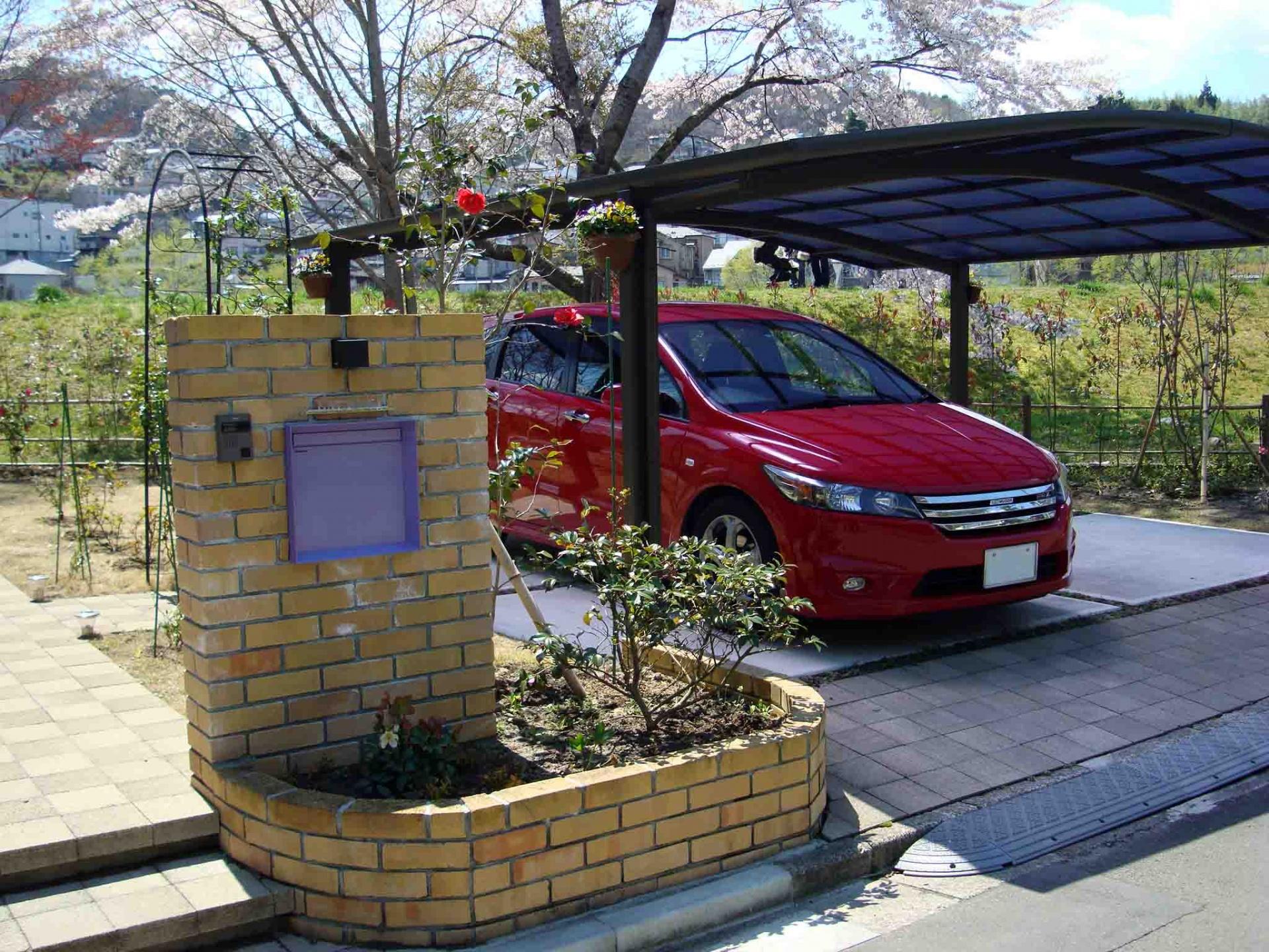 玄関脇のヤブツバキと隣接国有地の桜,2010年4月25日
