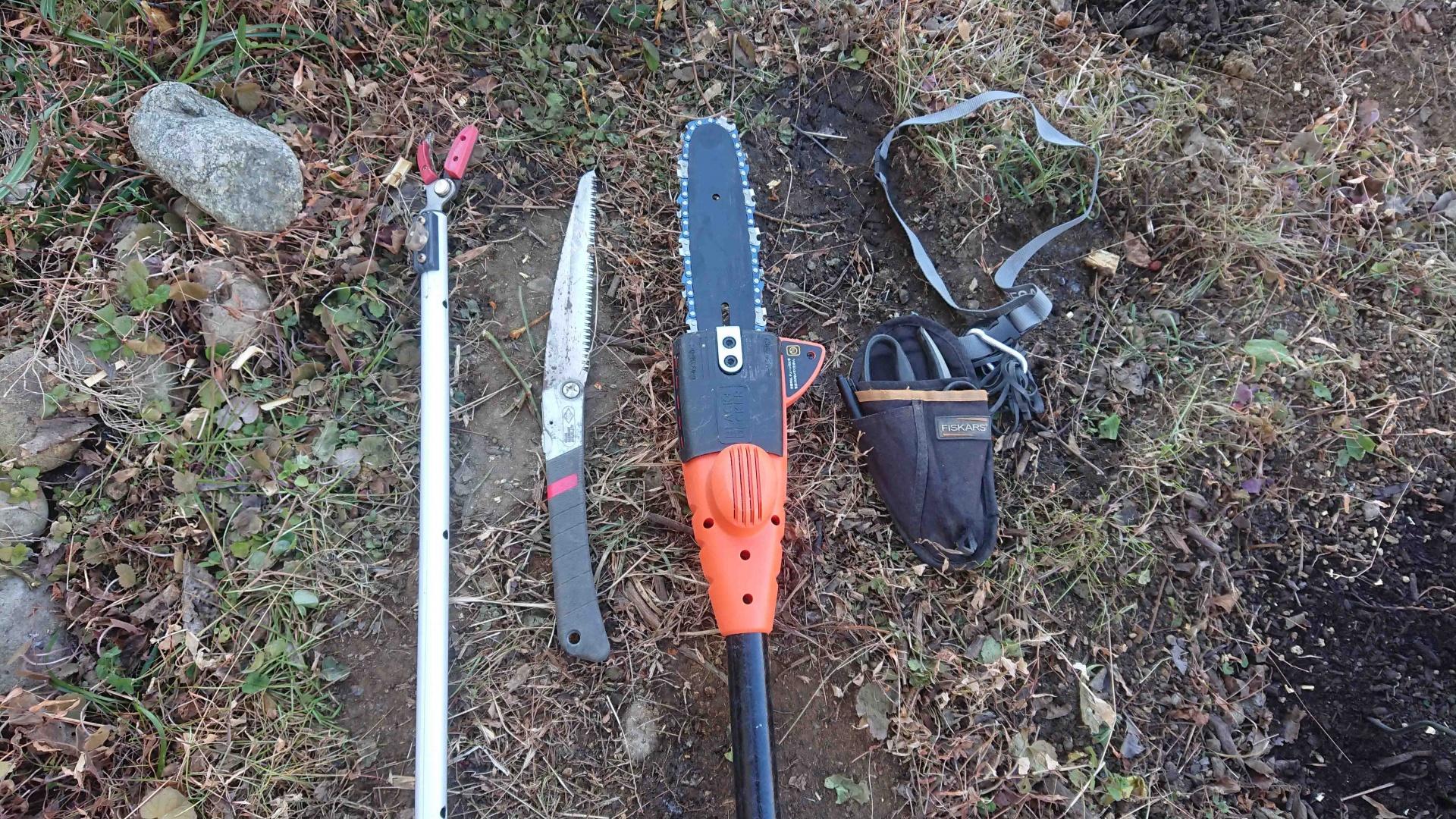 左から,高枝切りハサミ,ノコギリ,新しく買った充電式チェーンソー,剪定鋏