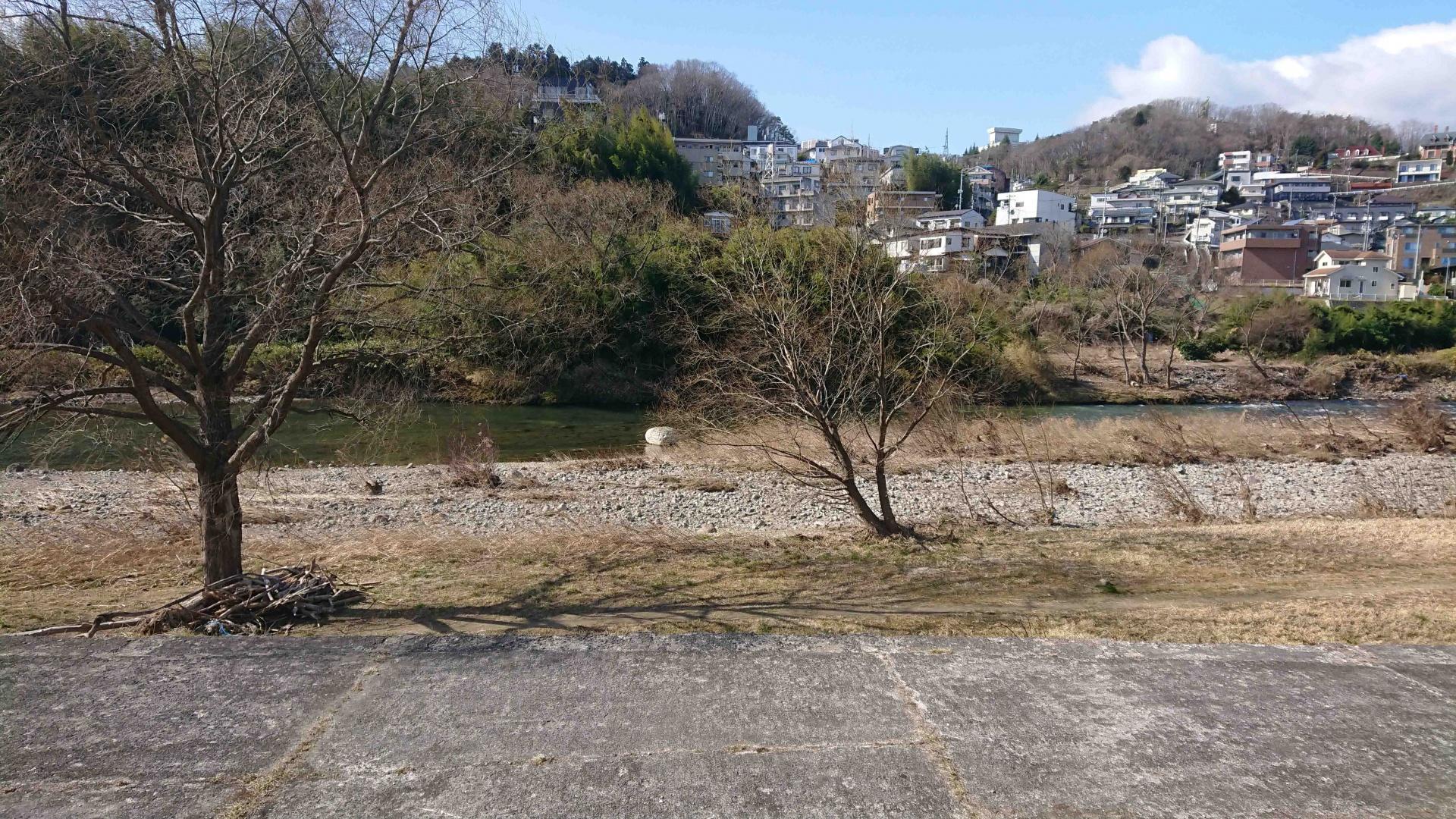 広瀬川,2020年3月1日