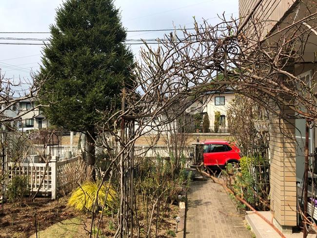 ブログ春の庭