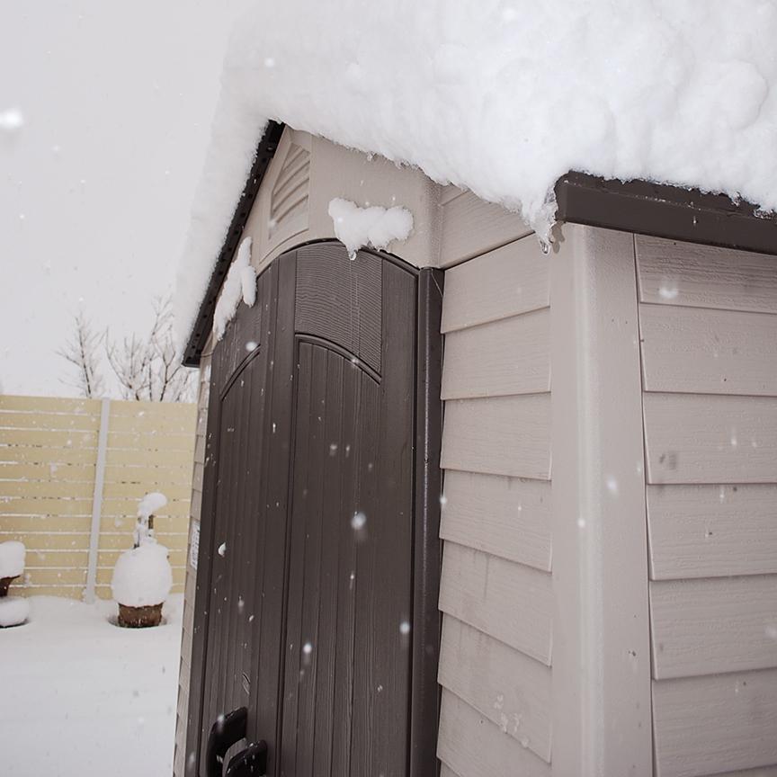 アクティブシェッド雪の中