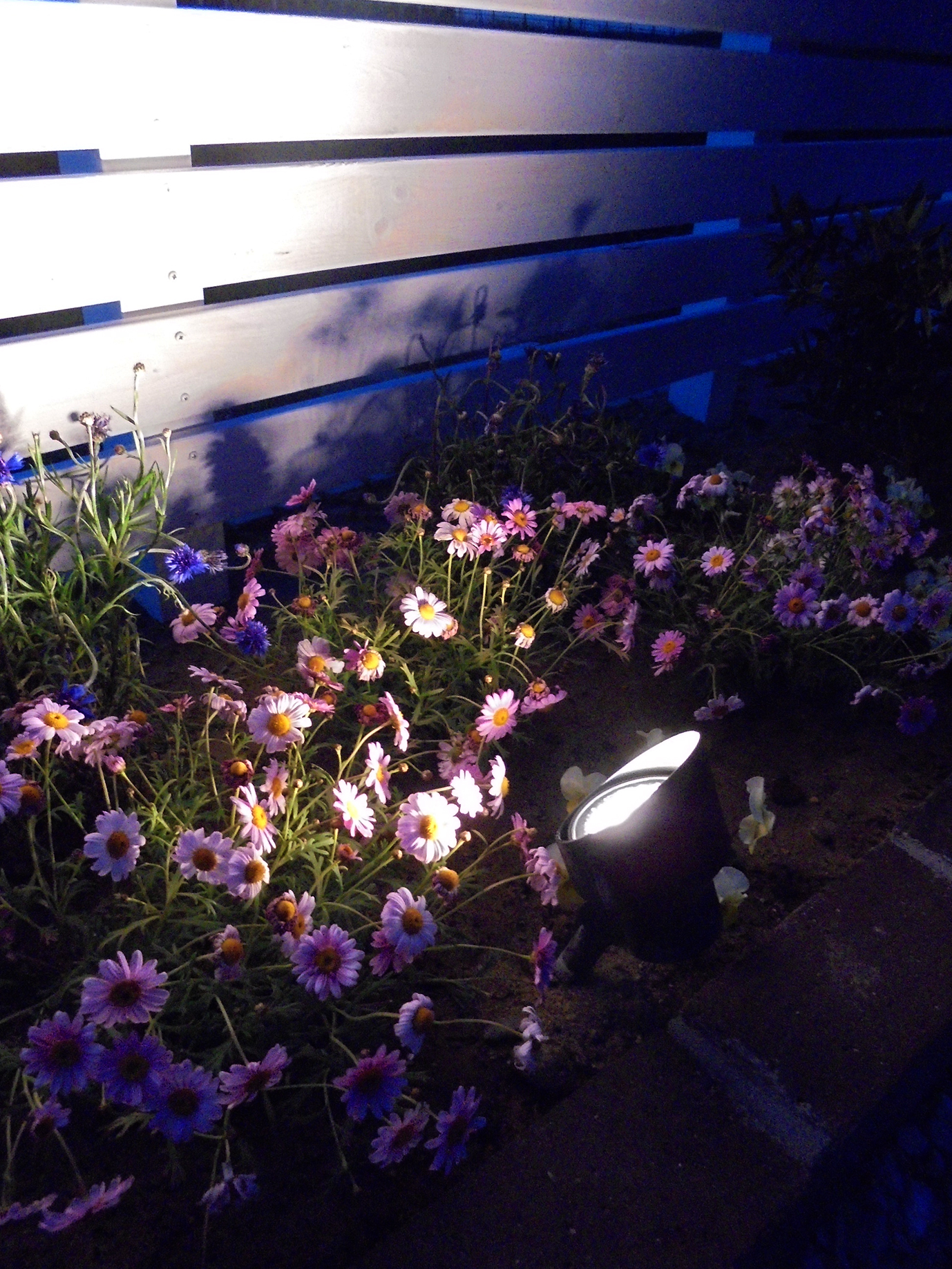 ガーデンアップライト