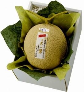 静岡クラウン印「一木一果」マスクメロン1