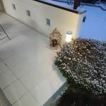 エクステリア工房 清光園 積雪