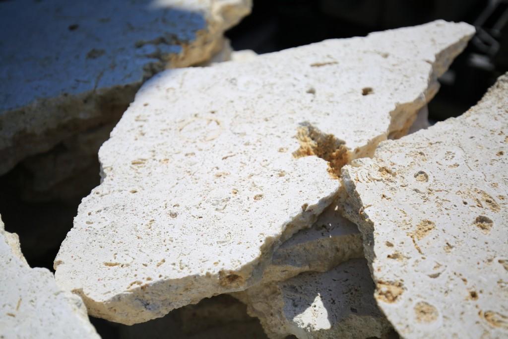 琉球石灰岩-1