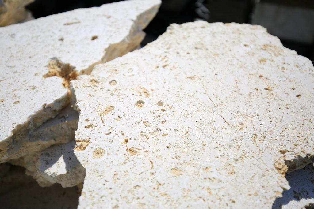 琉球石灰岩-2