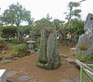 広島市造園剪定