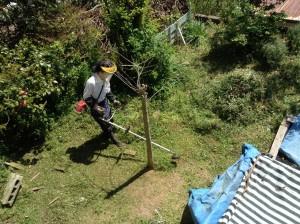 広島県草刈り