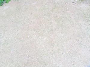 芝の管理広島