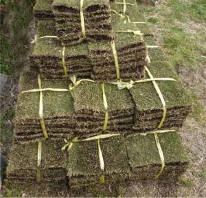 芝張り材料は広島で塩田剪庭園