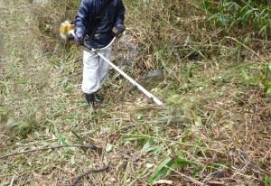 広島造園草刈り作業