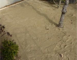 芝張り広島で塩田剪庭園