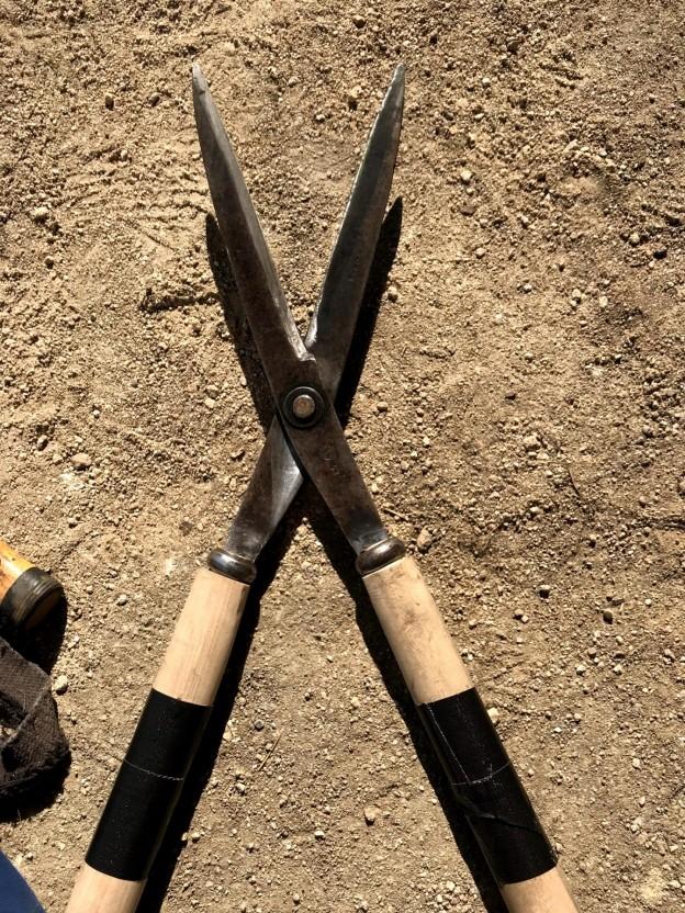広島市西区で刈り込み剪定は塩田剪庭園