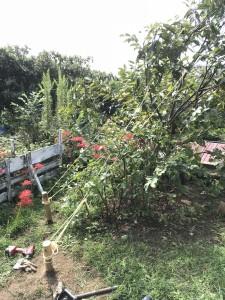 広島市西区、佐伯区で植木の植え付け、支柱は塩田剪庭園