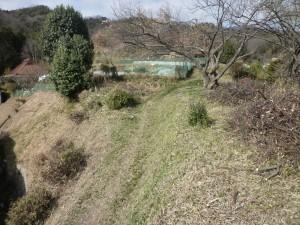 広島県草刈り塩田剪庭園