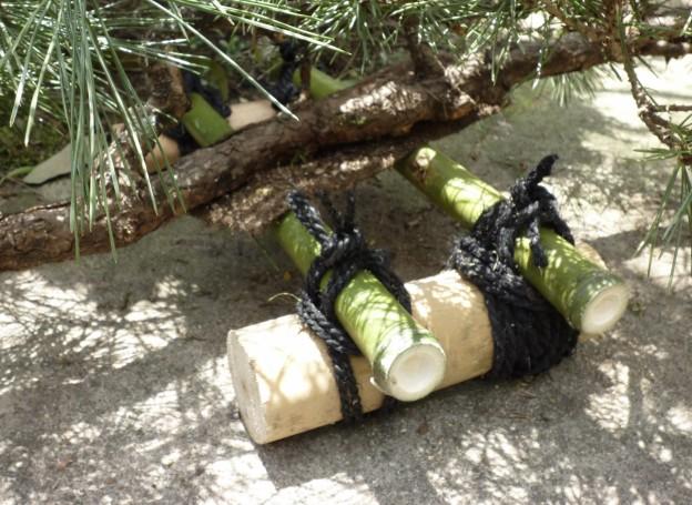 広島県広島市西区で植木剪定は塩田剪庭園