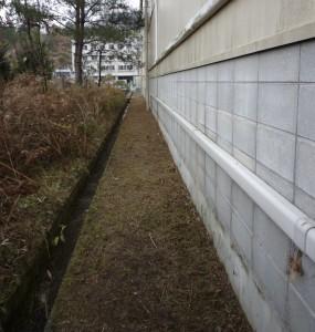 広島市西区で草刈りは樹木剪定士の塩田剪庭園