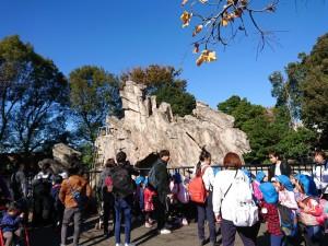 20191120上野動物園_191121_0029