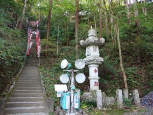 20191110東郷公園御嶽山_191111_0015