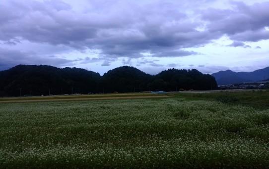 台風が来る前の風景