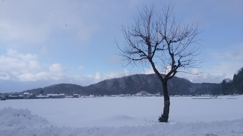 福井の雪景色