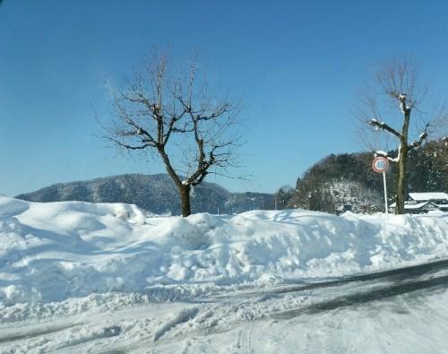 見慣れた雪景色
