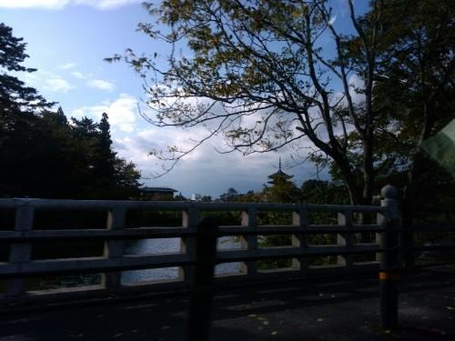 猿沢の池 興福寺五重塔