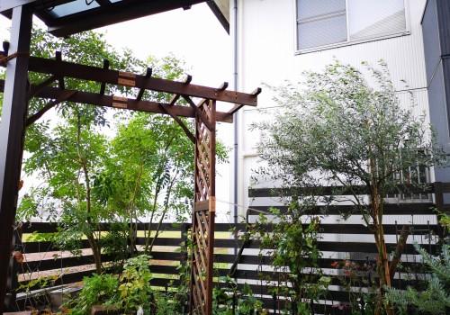 台風の後の庭