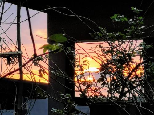 早春の夕日